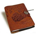 personal diary for brother on raksha bandhan