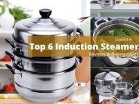 Induction Steamers in india
